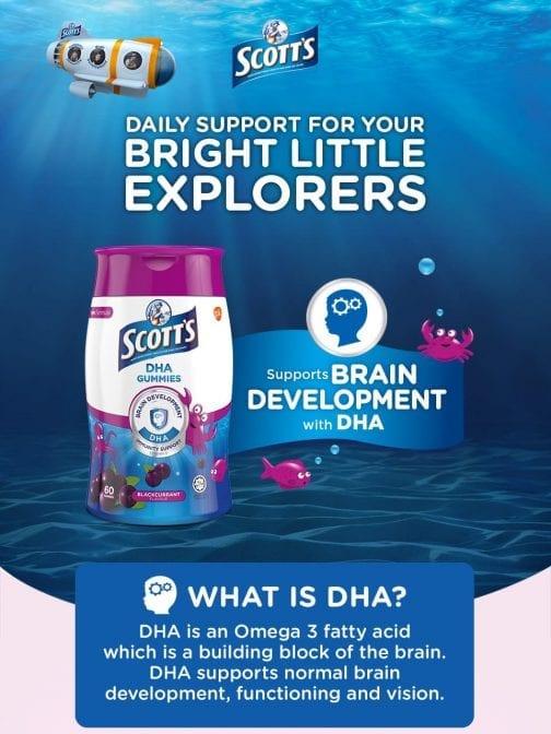 DHA Gummies Blackcurrant Flavour Brain Development with DHA